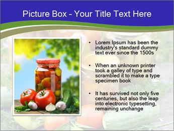 0000081301 PowerPoint Template - Slide 13