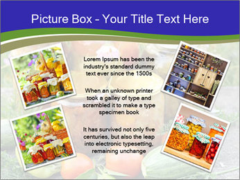 0000081301 PowerPoint Templates - Slide 24
