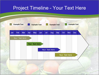0000081301 PowerPoint Templates - Slide 25