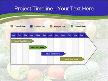 0000081301 PowerPoint Template - Slide 25