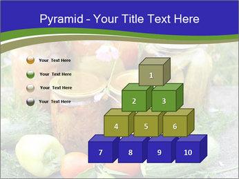 0000081301 PowerPoint Template - Slide 31
