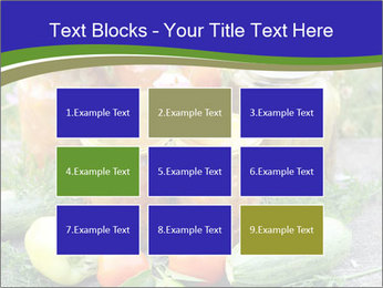 0000081301 PowerPoint Templates - Slide 68