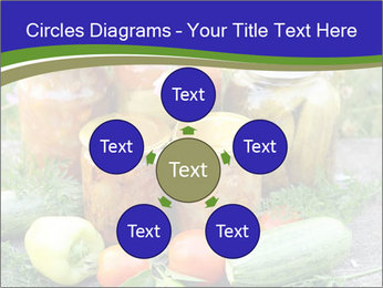 0000081301 PowerPoint Templates - Slide 78