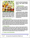 0000081301 Word Template - Page 4