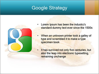 0000081303 PowerPoint Template - Slide 10