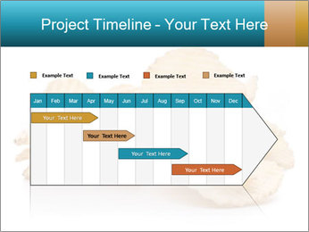 0000081303 PowerPoint Template - Slide 25