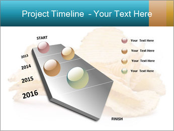 0000081303 PowerPoint Template - Slide 26