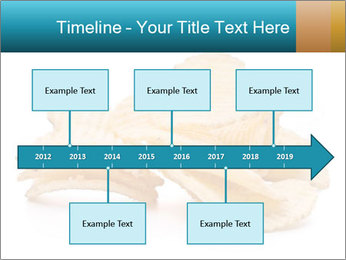 0000081303 PowerPoint Template - Slide 28