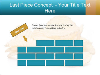 0000081303 PowerPoint Template - Slide 46