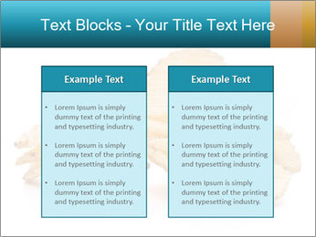 0000081303 PowerPoint Template - Slide 57