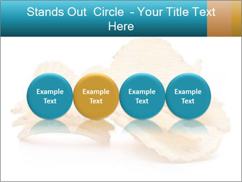 0000081303 PowerPoint Template - Slide 76