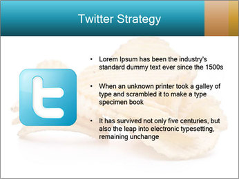 0000081303 PowerPoint Template - Slide 9