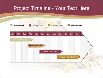 0000081304 PowerPoint Templates - Slide 25