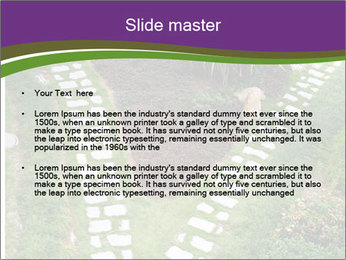 0000081306 PowerPoint Template - Slide 2