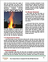 0000081309 Word Templates - Page 4