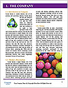 0000081310 Word Template - Page 3
