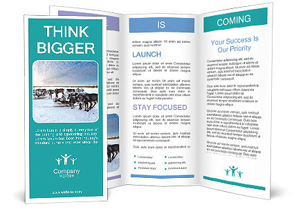 0000081315 Brochure Template