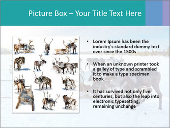 0000081315 PowerPoint Templates - Slide 13