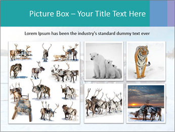 0000081315 PowerPoint Templates - Slide 19