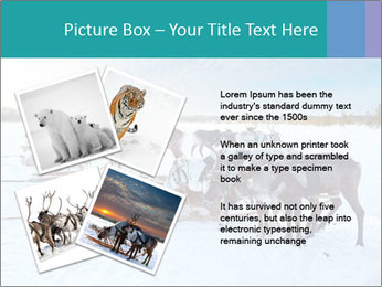 0000081315 PowerPoint Templates - Slide 23