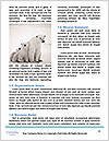 0000081315 Word Templates - Page 4