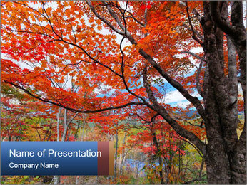 0000081316 PowerPoint Template - Slide 1