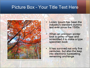 0000081316 PowerPoint Template - Slide 13