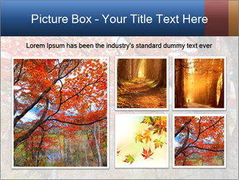 0000081316 PowerPoint Template - Slide 19