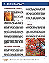 0000081316 Word Templates - Page 3
