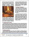 0000081316 Word Templates - Page 4