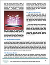 0000081317 Word Templates - Page 4