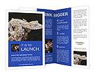 0000081322 Brochure Templates
