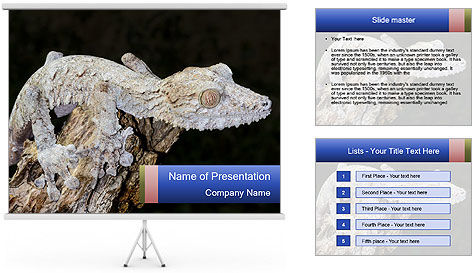 0000081322 PowerPoint Template