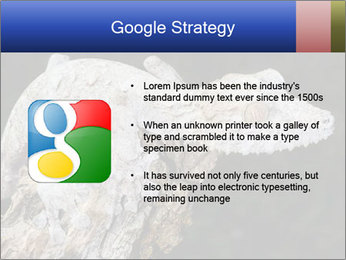 0000081322 PowerPoint Template - Slide 10