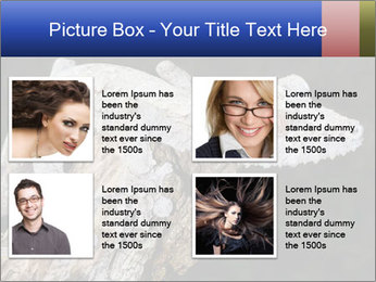 0000081322 PowerPoint Template - Slide 14