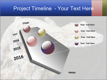 0000081322 PowerPoint Template - Slide 26