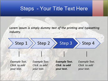 0000081322 PowerPoint Template - Slide 4