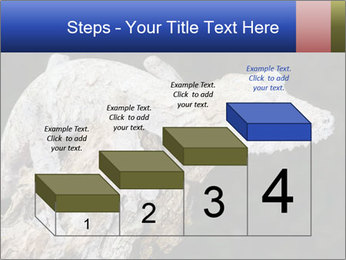 0000081322 PowerPoint Template - Slide 64