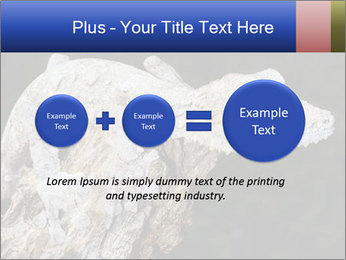 0000081322 PowerPoint Template - Slide 75
