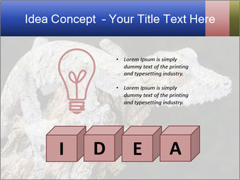 0000081322 PowerPoint Template - Slide 80
