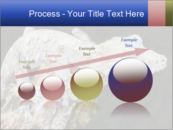 0000081322 PowerPoint Template - Slide 87