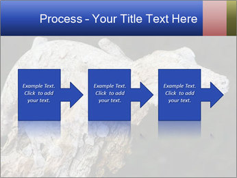 0000081322 PowerPoint Template - Slide 88