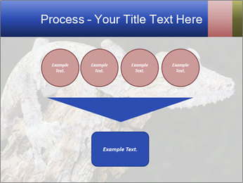0000081322 PowerPoint Template - Slide 93