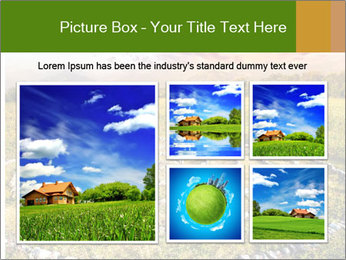 0000081326 PowerPoint Template - Slide 19