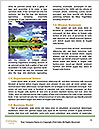 0000081326 Word Template - Page 4