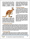 0000081337 Word Templates - Page 4