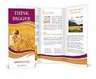 0000081339 Brochure Templates