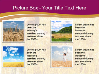 0000081339 PowerPoint Template - Slide 14