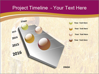 0000081339 PowerPoint Template - Slide 26