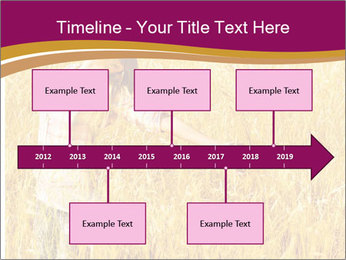 0000081339 PowerPoint Template - Slide 28